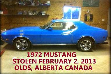 stolen-mustang-001